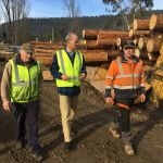 at Huon Valley Timber